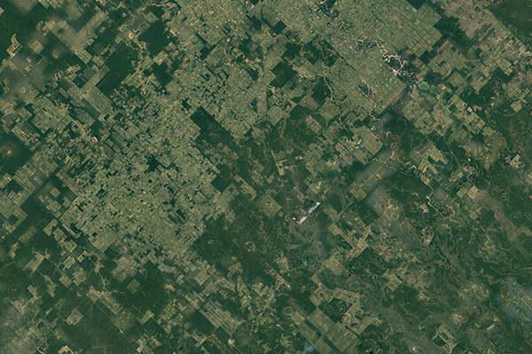 levantamientos topográficos forestal drones